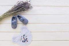 Baby concept with branches and bibs Stock Photography