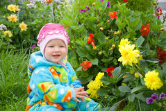 Baby considers flower Stock Image