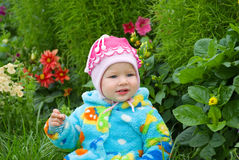 Baby considers flower Stock Photography