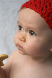 Baby Cookie Stock Images