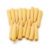 Baby corn. Isolated on white Stock Images