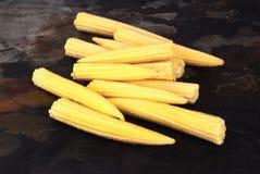 Baby Corn. Fresh organis baby corn against grey Royalty Free Stock Image