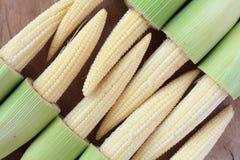 Baby corn. On wood background Stock Image