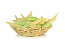 Baby corn in basket on white background.  Royalty Free Stock Image