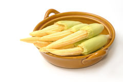 Baby corn in the bowl Stock Photos