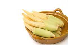 Baby corn in the bowl Royalty Free Stock Photography