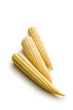Baby corn cobs. On white background Stock Photo