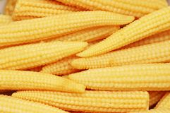 Baby corn cobs arranged as a background Royalty Free Stock Photography
