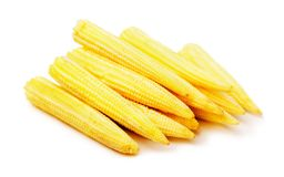 Baby corn. Heap of young baby corn  on a white background Royalty Free Stock Photography