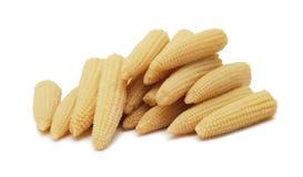 Baby corn isolated Royalty Free Stock Photo
