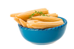 Baby corn. Isolated on white background Royalty Free Stock Photos