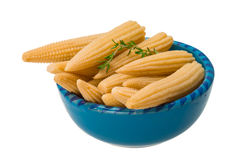 Baby corn. Isolated on white background Stock Image