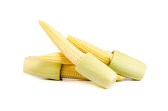Baby corn isolated on white background.  Royalty Free Stock Photography