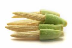 Baby Corn Isolated on White Background,isolate Stock Image