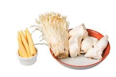 Baby corn,king trumpet mushroom,needle mushroom Royalty Free Stock Images