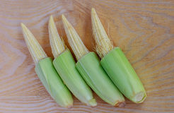 The Baby corn Stock Photo