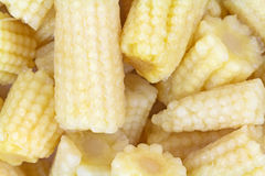 Baby Corn Nuggets Close Stock Photo