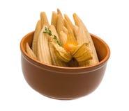 Baby corn Stock Image