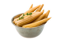 Baby corn. With thyme isolated on white background Stock Photography
