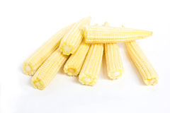 Baby corn. Royalty Free Stock Image