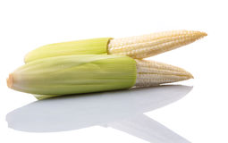 Baby Corns VII Stock Image