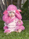 Baby in Costume, Halloween. A little baby girl with expressive bright blue eyes sits on the grass dressed in a pink poodle costume, dressed for Halloween Royalty Free Stock Photo