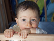 Baby in cot. Close up portrait of a 9 month old baby standing in his cot, looking into the camera Royalty Free Stock Photo