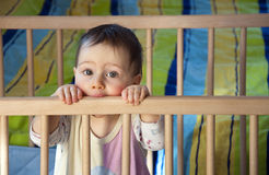 Baby in cot Stock Photography
