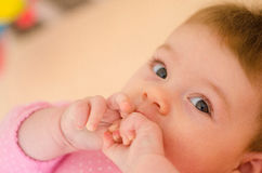 Baby in a cot Stock Image