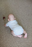 Baby courious on carpet Royalty Free Stock Images