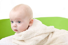 Baby covered with a bath towel. Portrait of a baby covered with a bath towel Royalty Free Stock Images
