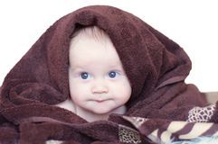 Baby covered by brown blanket on white background Stock Image