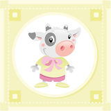Baby Cow Stock Photo