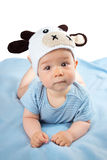 Baby in a cow hat on blue blanket Stock Images
