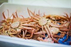 Baby crabs in white box Stock Photo