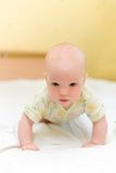 Baby crawl on bed. Baby crawl on white bed Stock Images