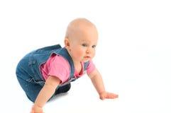 Baby crawling Royalty Free Stock Photos