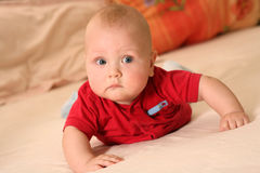Baby crawling. Sweet  baby crawling.Age 6 month Stock Photography