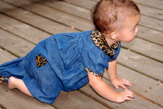 Baby Crawling. A cute baby girl crawling outdoors on an old deck.  She's wearing denim trimmed in leopard print Royalty Free Stock Image
