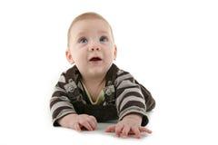 Baby crawling Royalty Free Stock Photo