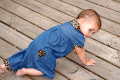 Baby Crawling 2,. A cute baby girl crawling outdoors on an old deck.  She's wearing denim trimmed in leopard print Royalty Free Stock Photo
