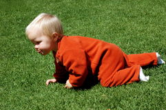Baby crawling. A beautiful blond little caucasian white baby girl with cute expression in her pretty face and dressed in orange crawling on hands and legs in the Royalty Free Stock Photos
