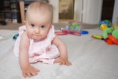 Baby crawling Stock Photos