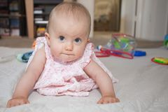 Baby crawling Royalty Free Stock Image