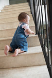 Baby crawling alon on stairs. Baby boy crawling alone on stairs, very dangerous. ***PS ; movement blur royalty free stock images