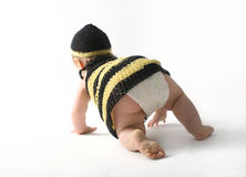 Baby crawling away Stock Photography
