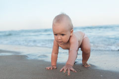 Baby crawling on the beach Stock Image