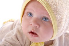 Baby crawling on blanket Stock Photography