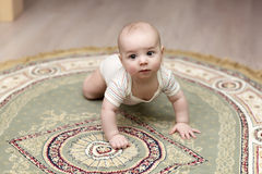 Baby crawling on carpet Royalty Free Stock Image