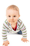Baby crawling on the floor Royalty Free Stock Image